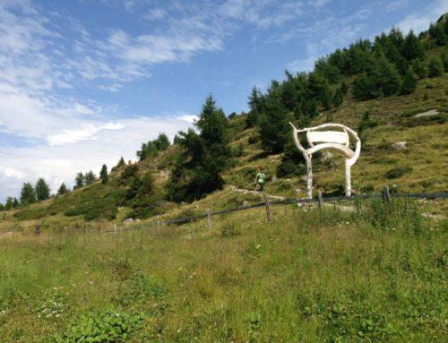 Forderung nach vorzeitiger Öffnung der Bergbahnen in Innsbruck und Umgebung wird unterstützt. Minister Anschober möge sich an Forderungen von Bürgermeister Willi orientieren.
